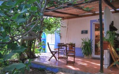 Experience Portuguese rural life at Quinta da Fornalha
